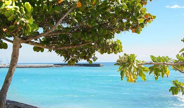 La Reunion und Mauritius
