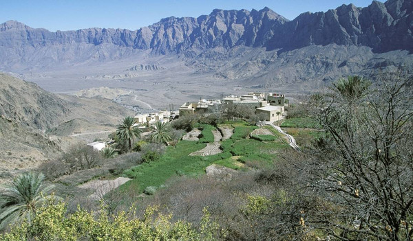 Oman Reise - Jebel Akhdar Bergplateau