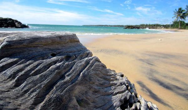 Strand von Sri Lanka