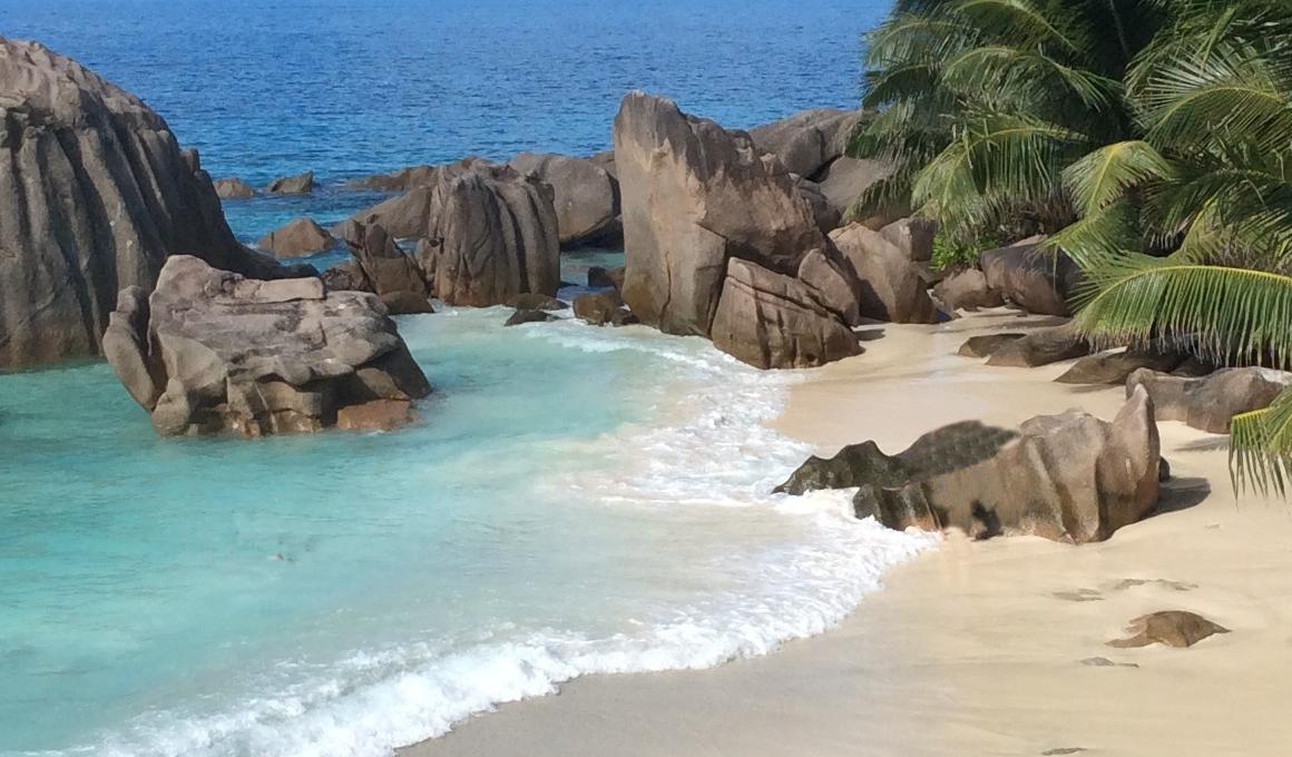 Senior, der den Strand der westlichen Palmen datiert